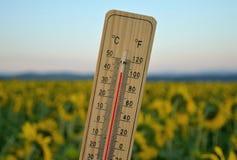 Termometro di legno di Mercury Immagini Stock Libere da Diritti