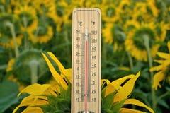 Termometro di legno di Mercury Fotografie Stock