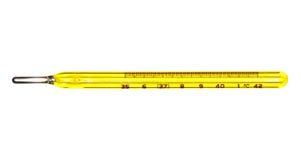 Termometro di Mercury medico Fotografia Stock Libera da Diritti