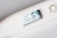 Termometro medico Fotografie Stock Libere da Diritti