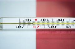 Termometro medico di vetro Immagine Stock