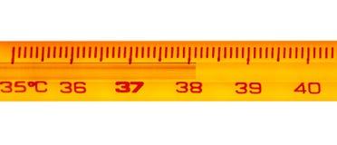 Termometro a mercurio Fotografie Stock Libere da Diritti