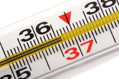 Termometro a mercurio isolato su bianco fotografia stock