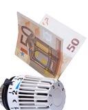 Termostat med euro 50 Arkivbilder