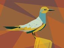 Tern illustration Stock Photo