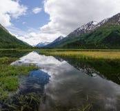 Tern jeziora odbicia Zdjęcia Royalty Free