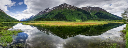 Tern Lake. In summer, Tern Lake on the Kenai Peninsula in Alaska is vibrant with life and reflections Stock Image