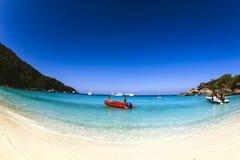 Terne rouge sur la plage Images libres de droits