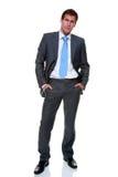 Terno cinzento das riscas do homem de negócios isolado Imagem de Stock Royalty Free