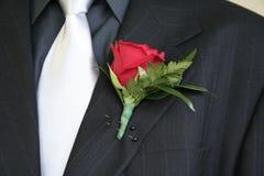 Terno do lapel de Rosa Imagem de Stock Royalty Free