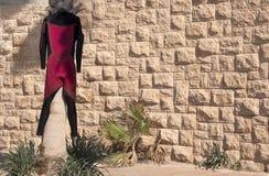 Terno do surfista que pendura em uma palmeira contra uma parede de pedra fotografia de stock