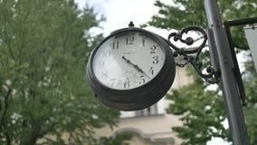 Ternopil Vieille horloge dans la forêt banque de vidéos