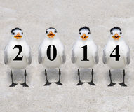 2014 Terns Royalty Free Stock Photography