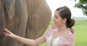 Ternura da mulher asiática atrativa nova no traje tradicional com elefante vídeos de arquivo