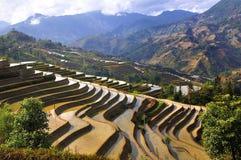 Terraço de China Yunnan Hani Foto de Stock