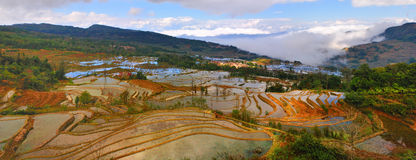 Terraço de China Yunnan Hani Imagens de Stock