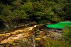 Terraço de mármore, vale vulcânico de Waimangu Fotos de Stock Royalty Free