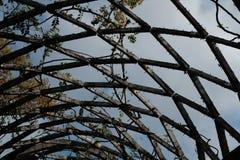 Terraço de madeira interconectado em Boston imagens de stock royalty free