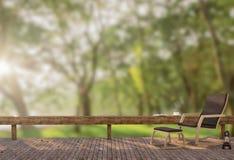 Terraço de madeira no jardim na imagem moning da rendição do tempo 3D Ilustração Stock