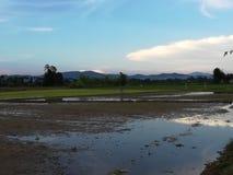 Terraço do arroz, Chiang Mai, Tailândia imagens de stock royalty free