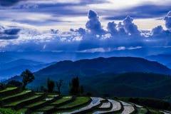 Terraço do arroz e nebuloso Fotografia de Stock Royalty Free