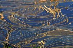 Terraço do arroz em Yuan Yang, China Foto de Stock