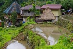 Terraço do arroz no banaue Fotografia de Stock Royalty Free