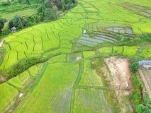 Terraço do arroz no distrito Chiang Mai Province da tanga de Chom do parque nacional de Doi Inthanon, Tailândia na vista aérea Fotos de Stock Royalty Free