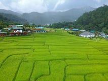 Terraço do arroz no distrito Chiang Mai Province da tanga de Chom do parque nacional de Doi Inthanon, Tailândia na vista aérea Imagem de Stock