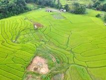 Terraço do arroz no distrito Chiang Mai Province da tanga de Chom do parque nacional de Doi Inthanon, Tailândia na vista aérea Foto de Stock