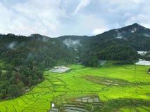 Terraço do arroz no distrito Chiang Mai Province da tanga de Chom do parque nacional de Doi Inthanon, Tailândia na vista aérea Fotografia de Stock