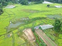 Terraço do arroz no distrito Chiang Mai Province da tanga de Chom do parque nacional de Doi Inthanon, Tailândia na vista aérea Fotografia de Stock Royalty Free