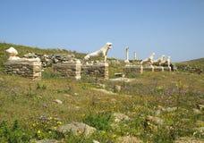 Terraço dos leões com os leões famosos das estátuas do ` de Naxians, local arqueológico de Delos, ilha de Delos Imagem de Stock