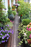 Terraço moderno bonito com muitas flores Foto de Stock Royalty Free
