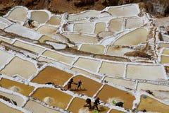 Terraços de sal, Moray de Maras, Peru Fotografia de Stock Royalty Free
