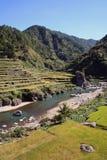 Terraços do arroz imagem de stock