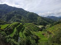 Terraços do arroz de Banaue fotos de stock royalty free