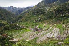 Terraços do arroz de Batad Fotografia de Stock Royalty Free