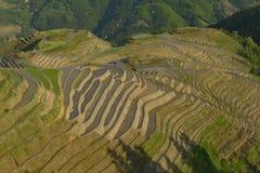 Terraços do arroz de Longji, província de Guangxi, China Fotografia de Stock