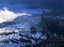 Terraços do arroz do yuanyang foto de stock