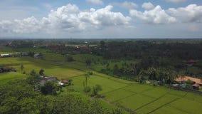 Terraços do arroz e nuvens de cúmulo vídeos de arquivo