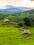 Terraços do arroz em Chiang Mai, Tailândia Imagem de Stock Royalty Free
