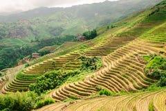 Terraços do arroz do Longji de Longsheng em Guilin, China imagens de stock royalty free