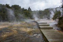 Terraços do silicone, Orakei Korako Geyserland, parque geotérmica, Nova Zelândia fotografia de stock