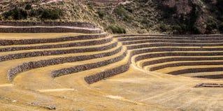 Terraços nos montes do Peru foto de stock royalty free