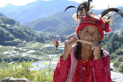 Terraços velhos Filipinas do arroz da mulher do ifugao imagem de stock