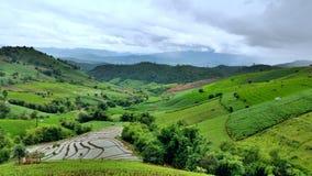 Terraços verdes do arroz Fotos de Stock Royalty Free