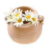 terra δοχείων λουλουδιών μ&alpha Στοκ Φωτογραφίες