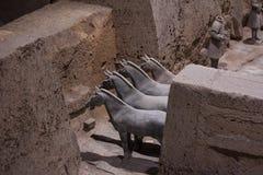 Terra - ратники cotta Стоковое Изображение RF