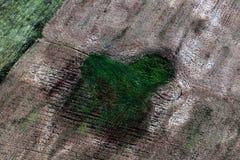 terra Image libre de droits